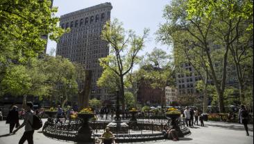 纽约公园里的人们,背景是熨斗大厦