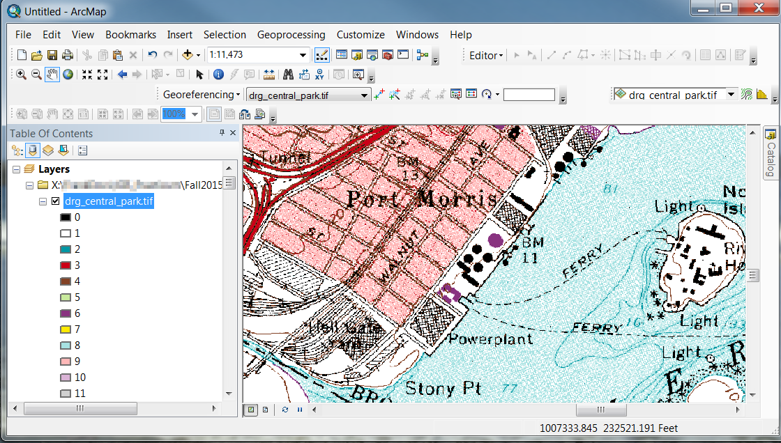A raster topographic map in ArcGIS
