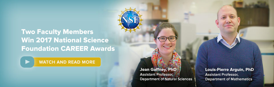 Two Baruch college faculty win the 2017 National Science Foundation Career Awards