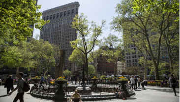 People in a NYC park, with Flatiron building in background